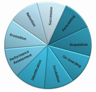 Talent Wheel - A simple model for Talent Management Activities